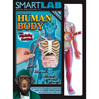 Smartlab You Explore It Human Body
