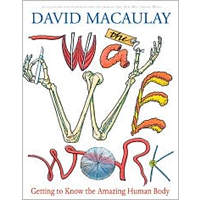 The Way We Work: Getting to Know the Amazing Human Body