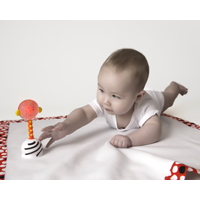 NogginStik Developmental Rattle