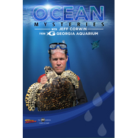 Ocean Mysteries with Jeff Corwin
