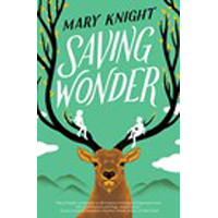 Saving Wonder